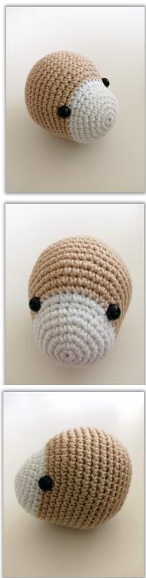 Lion Benroy Amigurumi Crochet Pattern head