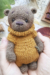Lovely Bear amigurumi free crochet pattern bead (1)
