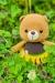 sunflower bear, bears, head, arms, legs